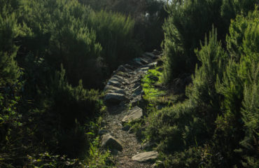 MeditAction.Hike The Megalithic Way. Altavia Cinque Terre 13